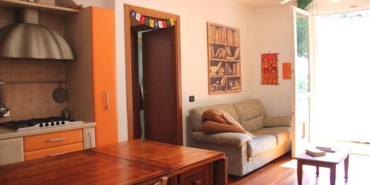 Luminoso appartamento al piano primo