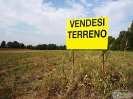 Terreno a Borghi