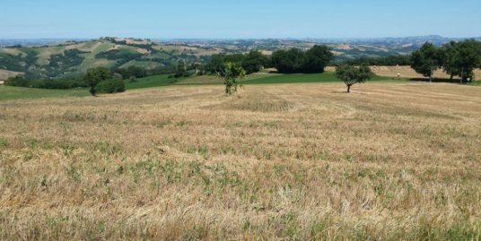 Terreno edificabile a Santarcangelo di Romagna